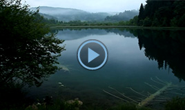 Video Plitvice